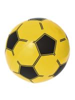 Мяч Спорт 31004